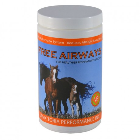 Free Airways